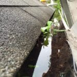 Gutter Cleaning Easton MD